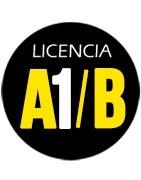 A1 - B